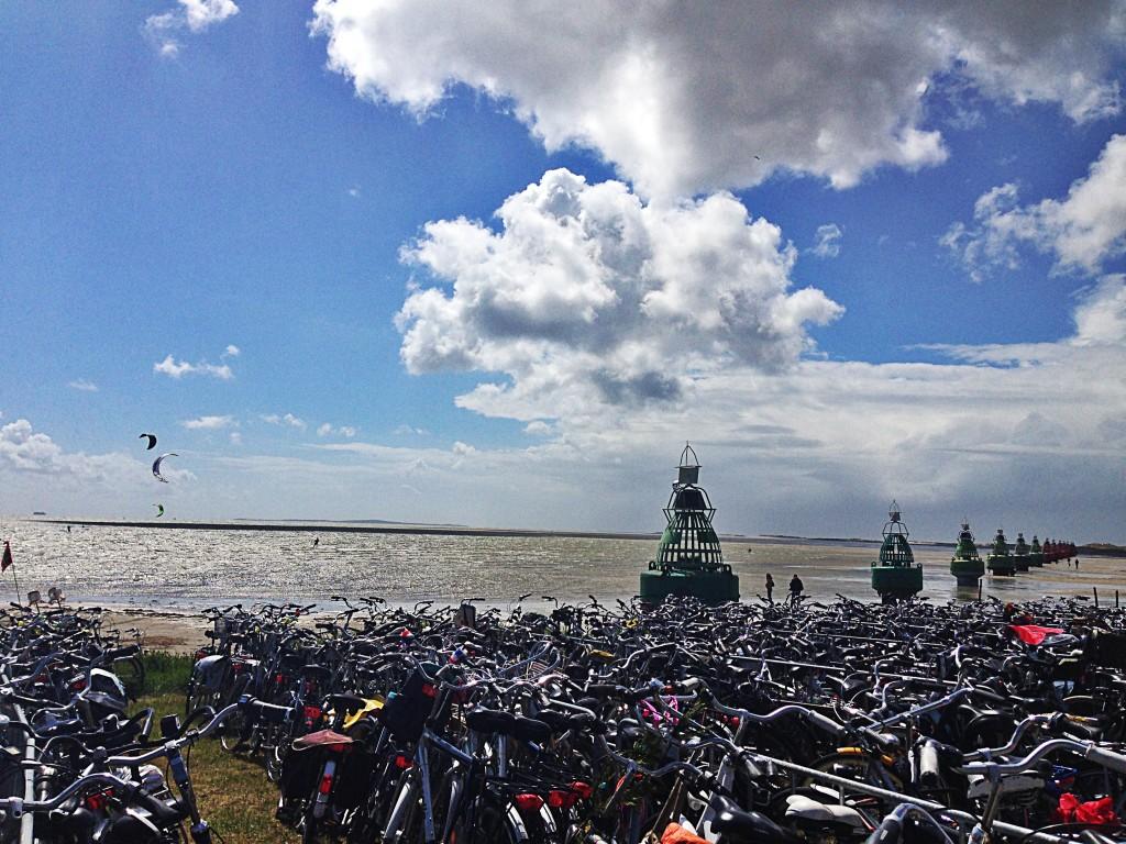 Oerol: zon, zee, strand, boeien én... fietsen!